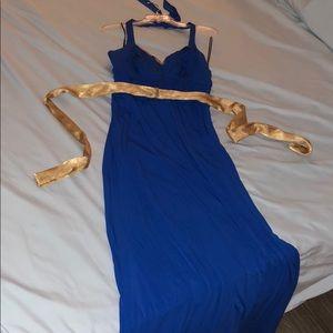 Floor Length Blue Dress Size 14